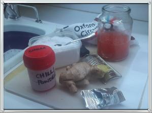 ginger beer starter