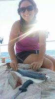 mmm fresh mackerel
